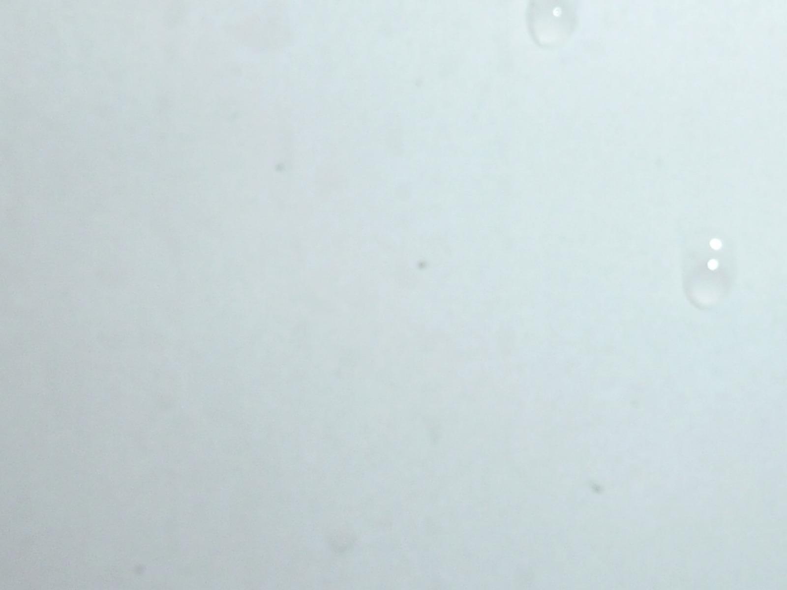 20130320-porsche-911-targa4s-04