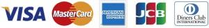 visa-master-amex-jcb-diners-icon